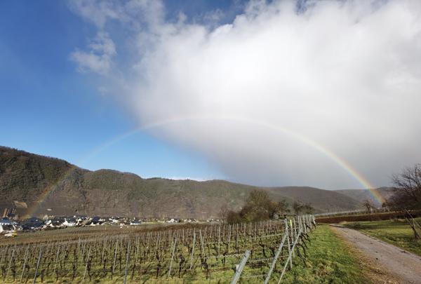 Regenbogen Weinberge
